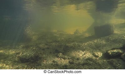 Under the water in the river