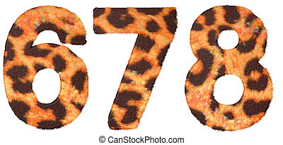 Leopard skin 6 7 and 8 figures isolated