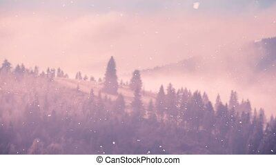 Beautiful winter nature landscape of misty forest -...