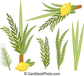 Happy Sukkot set. Collection of objects, design elements for Jewish Feast of Tabernacles with etrog, lulav, Arava, Hadas. Isolated on white background. Vector illustration.