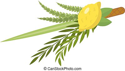 Sukkot set of herbs and spices of the etrog, lulav, Arava,...