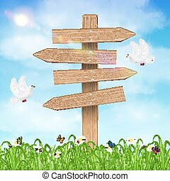 Wooden direction board on grass sky background