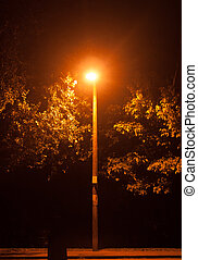 A bright glowing street lamp light in the dark outside at...