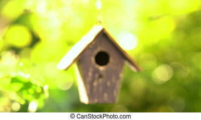 Video clip of a bird house hanging in a tree in a garden...