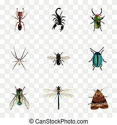 Realistic Damselfly, Spider, Emmet And Other Vector Elements. Set Of Insect Realistic Symbols Also Includes Jewel, Butterfly, Beetle Objects.