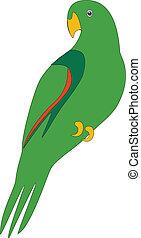 Parrot color 02