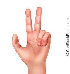 Hand showing victory sign - Vector illustration of realistic...