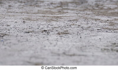 Drops of Rain Fall to the Pavement Forming a Puddle....