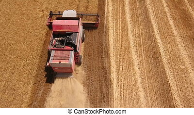 Aerial shot of a red combine harvester gathering wheat in...