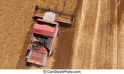 Aerial shot of a big combine harvestr on a golden wheat field in Ukraine