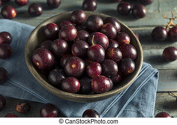 Homemade Sweet Muscadine Grapes in a Bowl