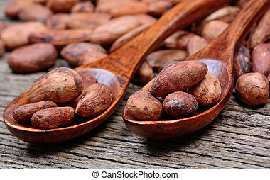 Wooden spoons with cocoa beans on table