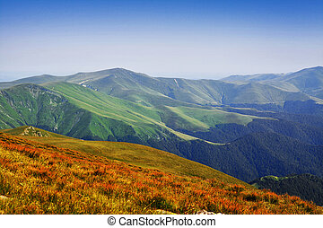carpathians - beautiful mountain landscape in the...