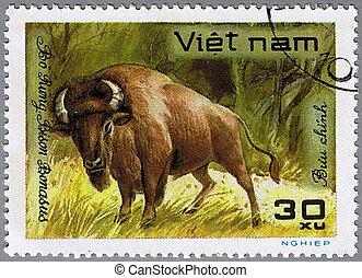 Wisent - VIETNAM - CIRCA 1981: A stamp printed in Vietnam...