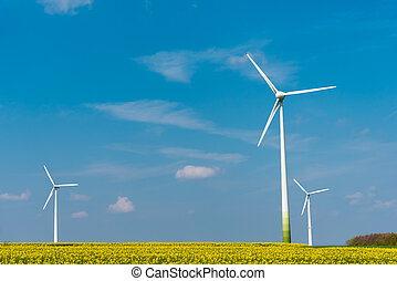Wind energy in rural Germany - Wind energy in a blooming...
