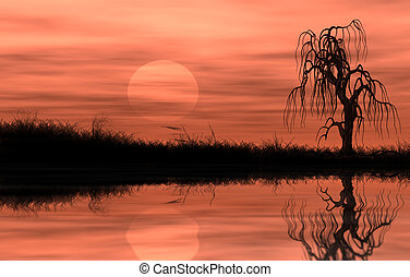 Reflected riparian tree in golden sunset