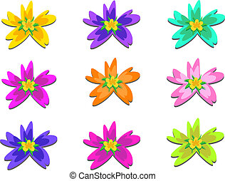 Mix of Five Point Flowers