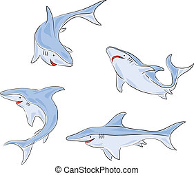Four Shark - Four pictures of a young shark