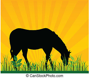 horse pasture grass vector illustration