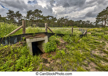 Wildlife underpass crossing culvert for animals under a...