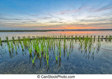 Sunset over lake with shore protection and riparian zone to...
