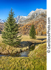Autumn in the valley - Autumn colors in the valley with two...