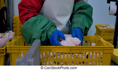 A worker packs chicken legs from a basket into individual...