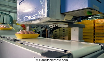 Packed sausages on trays pass automating labeling. - A...