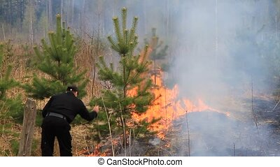 Fighting forest fires 3. - Forest fire in the Moscow region....