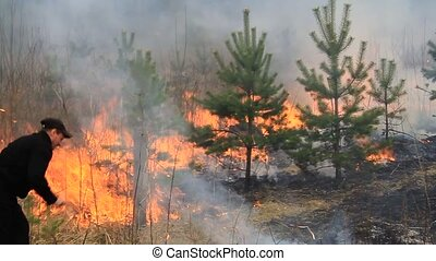 Fighting forest fires 1. - Forest fire in the Moscow region....