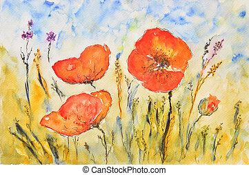 watercolor painting, poppies - watercolor painting of a...