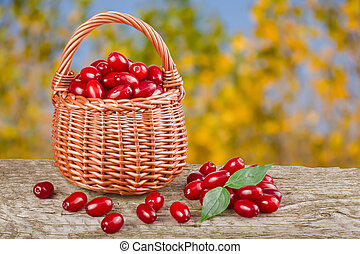dogwood berry with leaf in wicker basket on wooden table...
