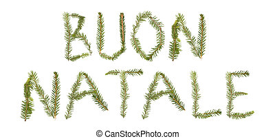 Spruce twigs forming the phrase 'BUON NATALE'
