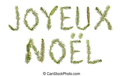 Spruce twigs forming the phrase 'Joyeux Noel'' isolated on...