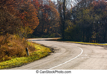 winding road through the forest with red foliage. beautiful...