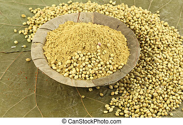 coriander powder in dry leaf background