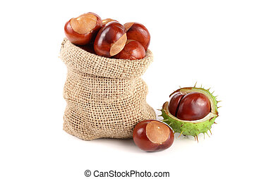 chestnut in a bag isolated on white background closeup.