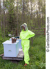 bee-keeper in a protective suit in an apiary