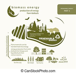 infographics renewable source of biomass energy and...