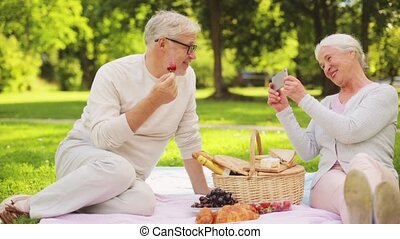 senior couple photographing at picnic in park - old age,...