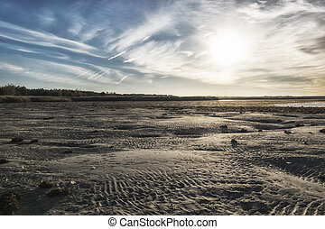 ebb in baltic sea. low water and sand beach