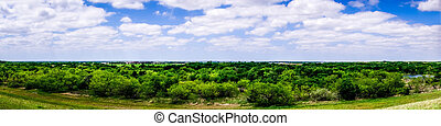 wide open texas landscape with partly cloudy skies