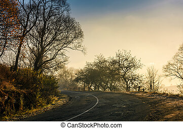 winding countryside road in late autumn fog. dangerous...