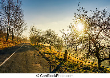 countryside road in late autumn fog at sunrise. dangerous...