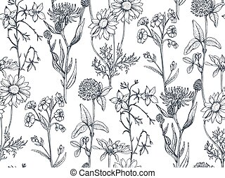 Vector seamless pattern with hand drawn herbs and flowers on...