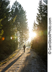Woman hiker walking on a mountain road, sun shining through...