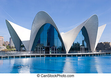 The Oceanografic Aquarium in Valencia, Spain.