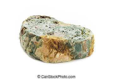Moldy bread on white background - Moldy bread isolated on...