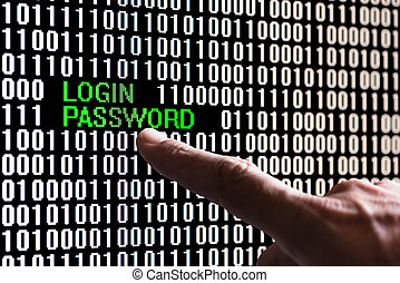 Finger pointing login password
