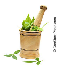 mortar and pestle with green herbs